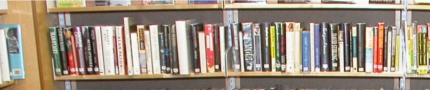 Learning library shelf books 2